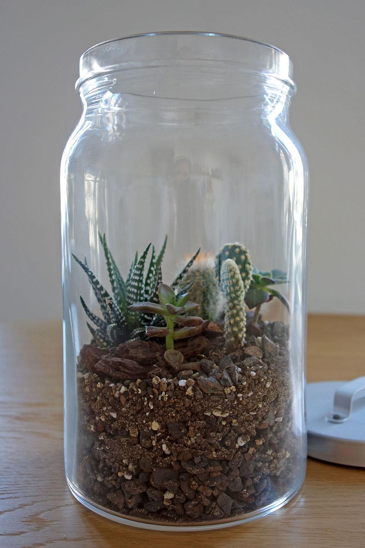 Diy mini terrarium kakteen im glas unhyped - Glas deko garten ...