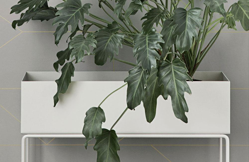 Ferm-Living-Plant-Planzen-Staender-Kuebel-Topf-Staender-Indoor-Outdoor-Design-1