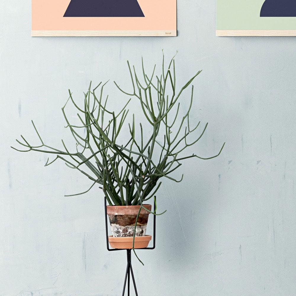 Ferm-Living-Plant-Planzen-Staender-Kuebel-Topf-Staender-Indoor-Outdoor-Design-6