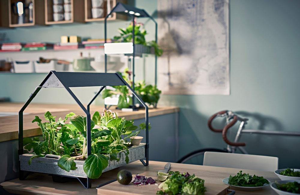Ikea-Hydrokultur-System-Anzucht-Anbau-Kraeuter-Pflanzen-LED-1