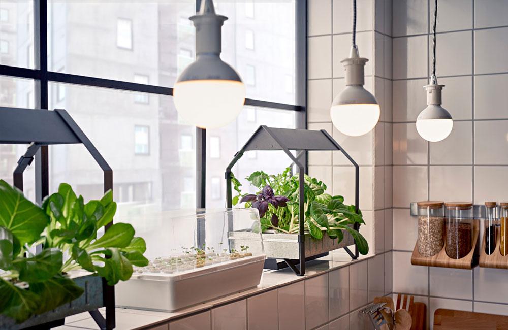 Ikea-Hydrokultur-System-Anzucht-Anbau-Kraeuter-Pflanzen-LED-2