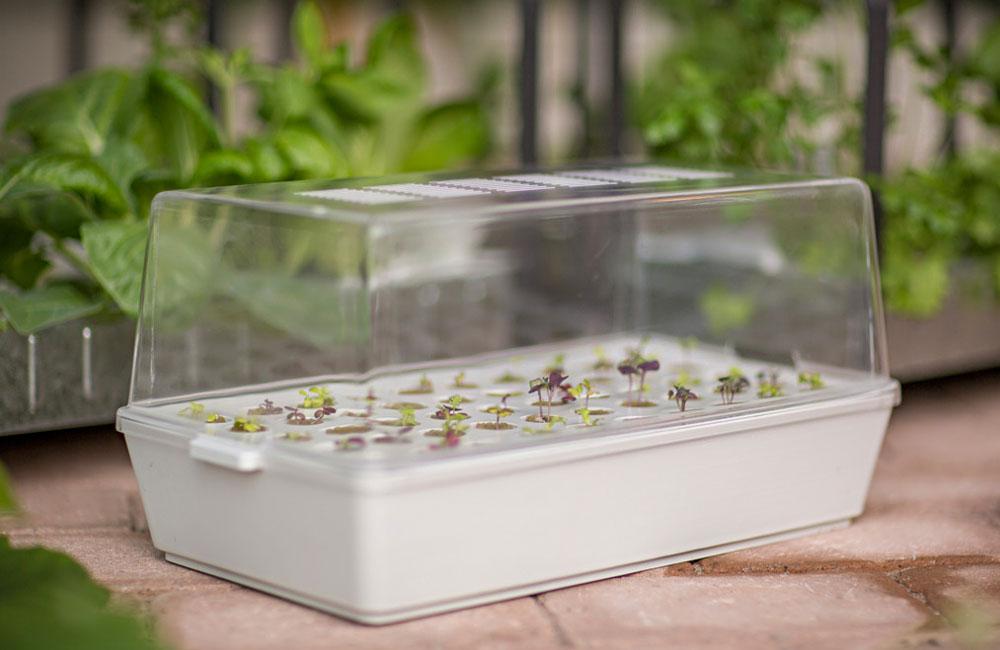Ikea-Hydrokultur-System-Anzucht-Anbau-Kraeuter-Pflanzen-LED-3