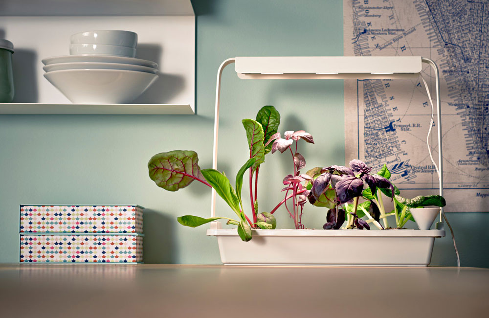 Ikea-Hydrokultur-System-Anzucht-Anbau-Kraeuter-Pflanzen-LED-4