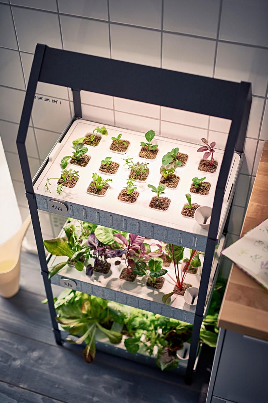 f r einen gr neren alltag neues hydrokultursystem von ikea unhyped. Black Bedroom Furniture Sets. Home Design Ideas