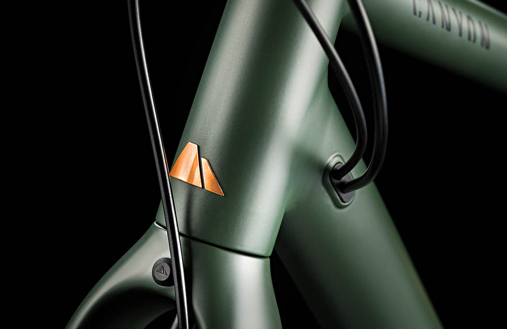 Canyon-Commuter-Brooks-150-Urban-Bike-Limited-Edition-Supernova-Detail
